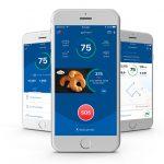 Mobilität zum Fixpreis – Dolphin Technologies und UNIQA Insurance Group gründen die goSmart Mobility GmbH